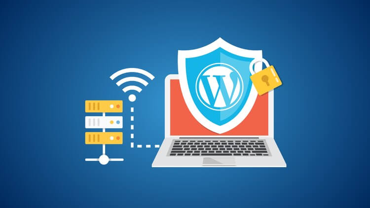 secure your WordPress